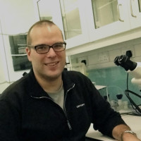 Gene regulation specialist Korneel Hens establishes new lab at CNCB
